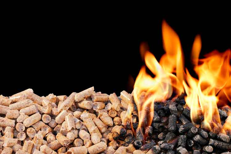 burning-biomass-wood-pellets